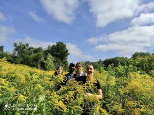 A few summer Studentendorf insights 3